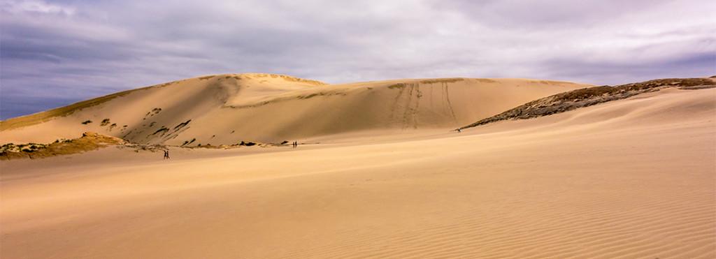 Les dunes de Ninety Mile Beach